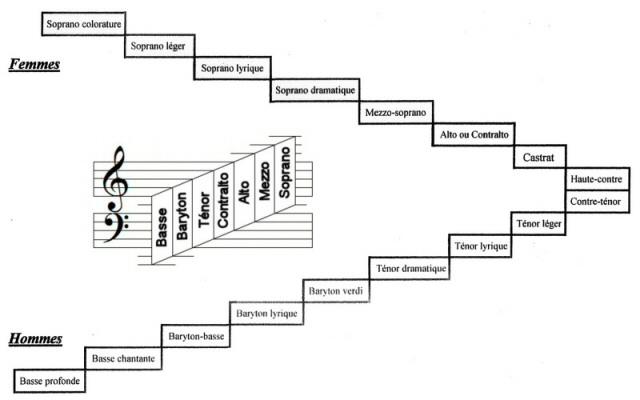 d couvrir la voix la classification des voix. Black Bedroom Furniture Sets. Home Design Ideas