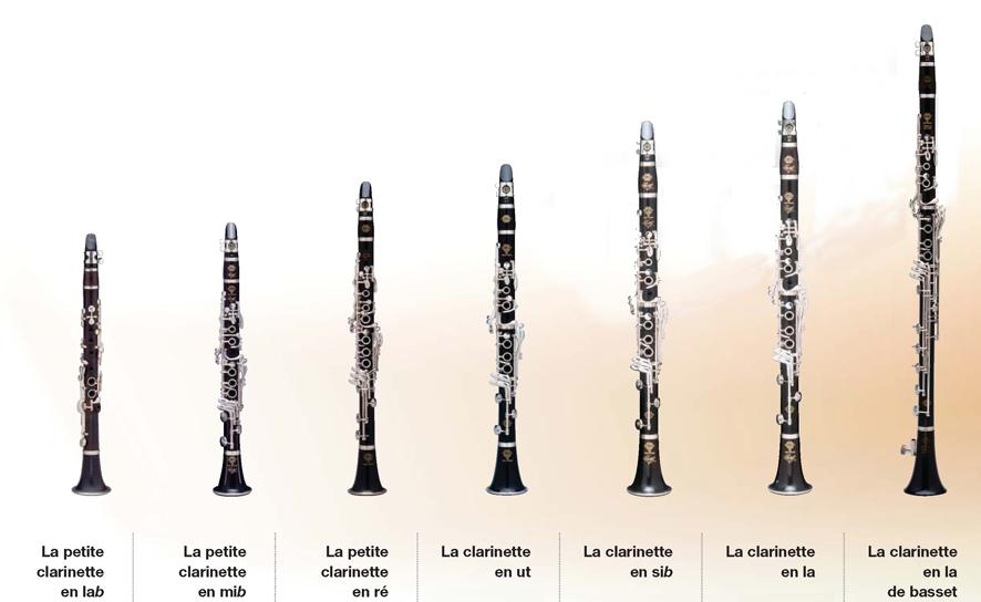 Instruments à vent Les bois  Anches simples