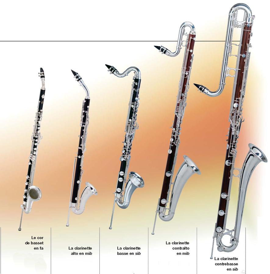 Extrêmement Instruments à vent- Les bois - Anches simples GV24